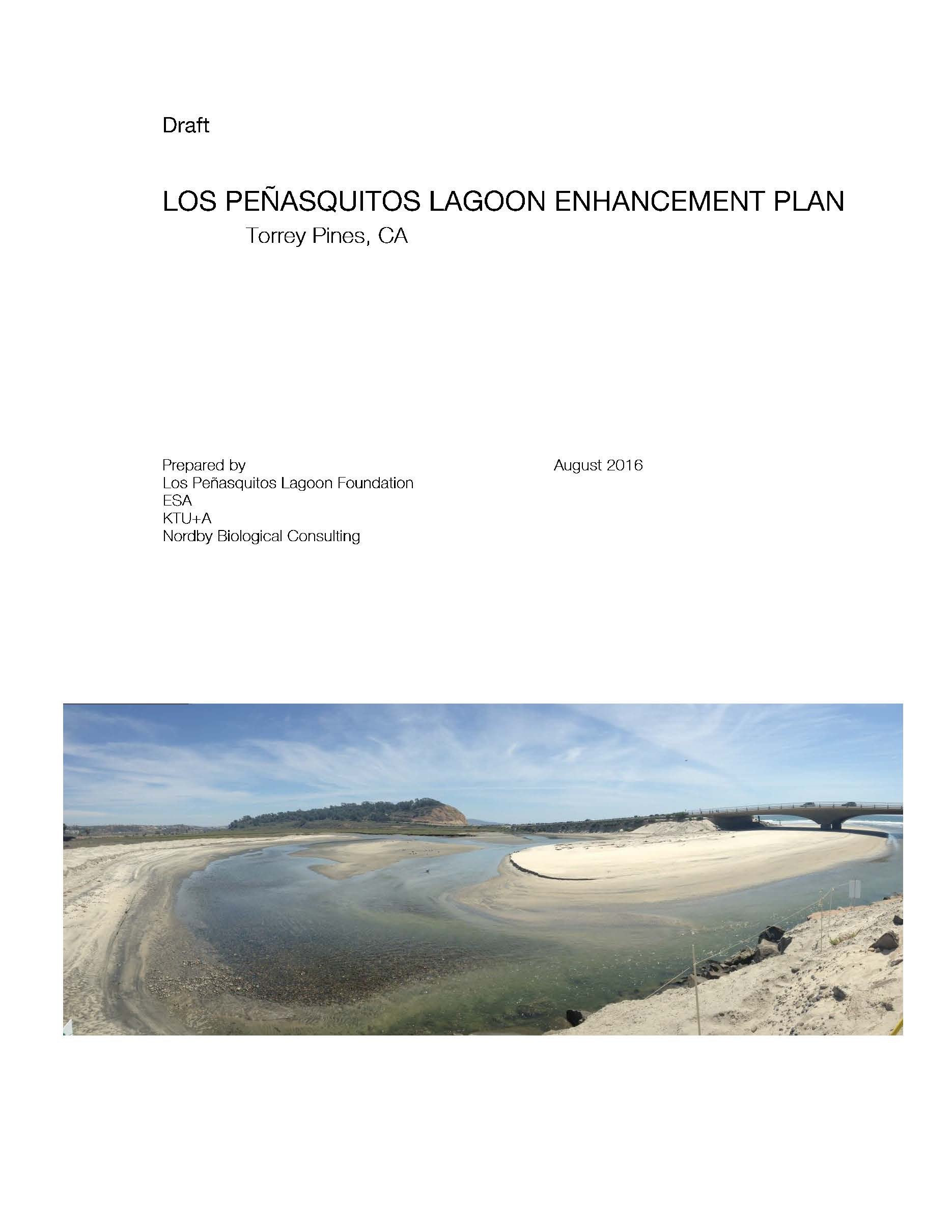 Enhancement Plan Cover copy