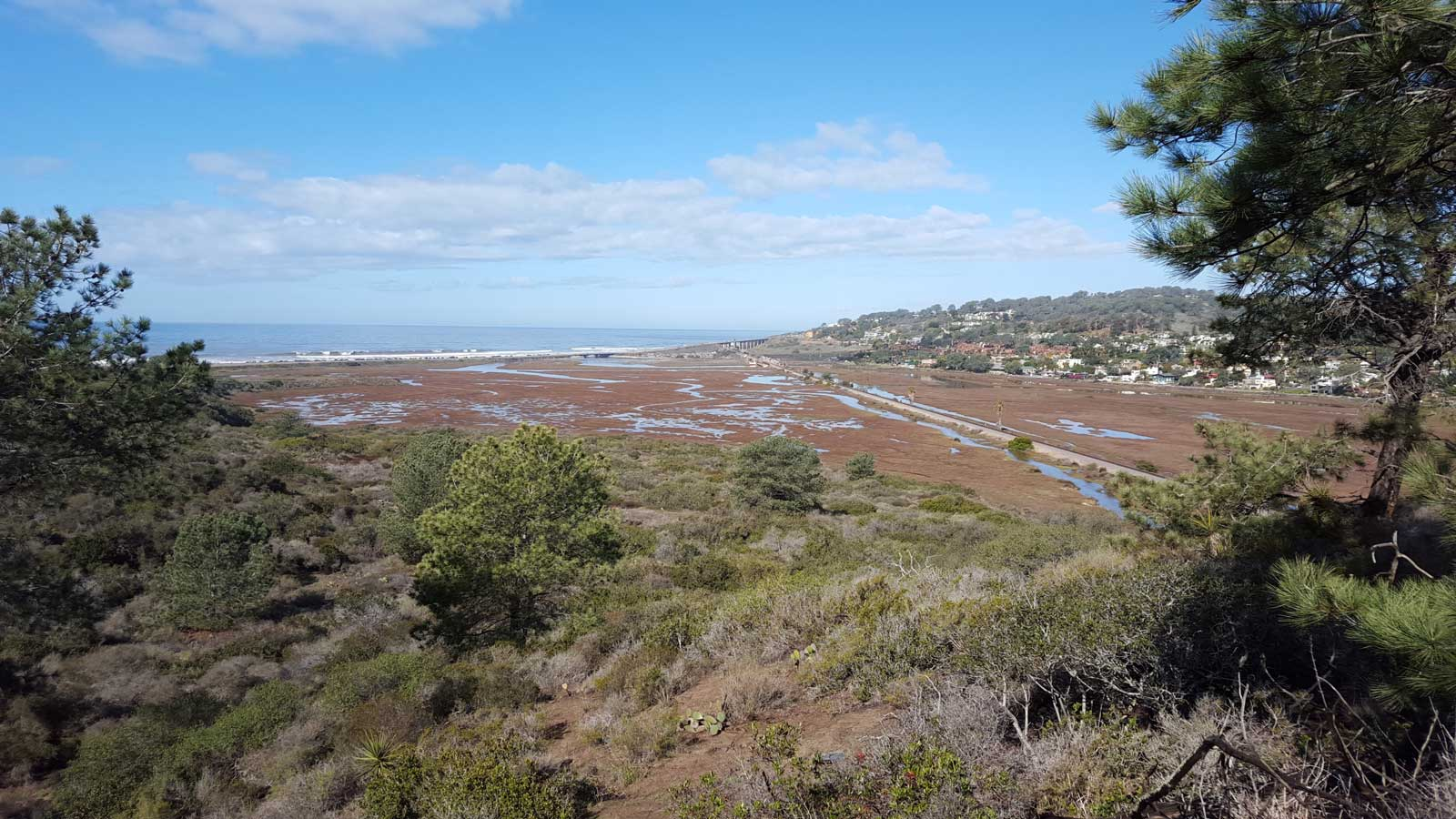Potential-views-from-the-Marsh-Trail-after-realignment