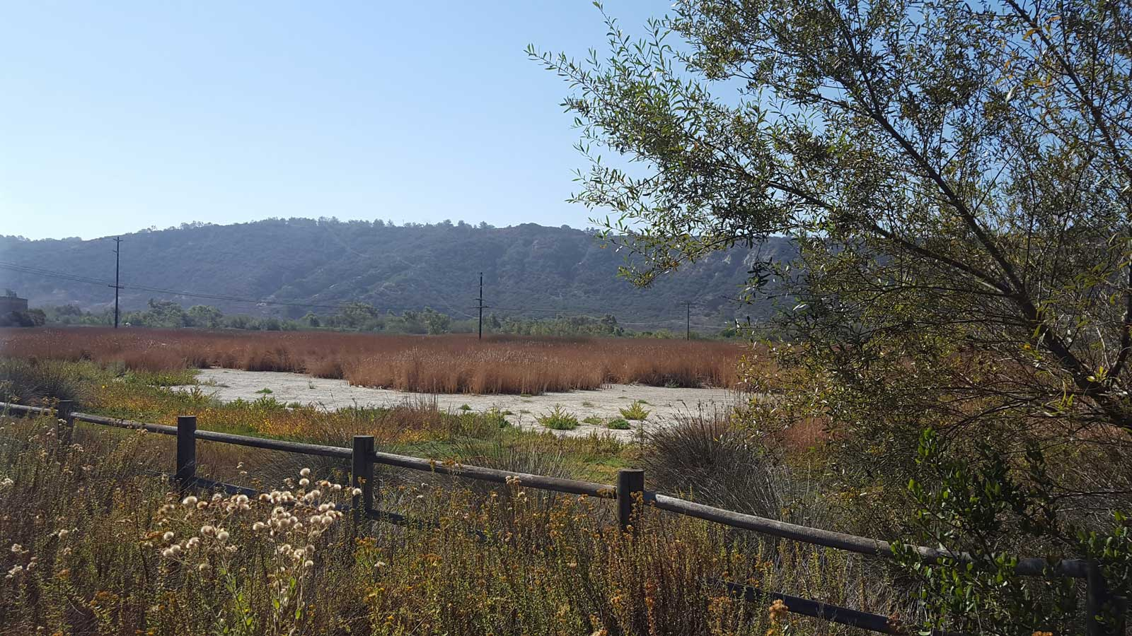 Views-from-Sorrento-Valley-Road-Multi-Use-Trail-2