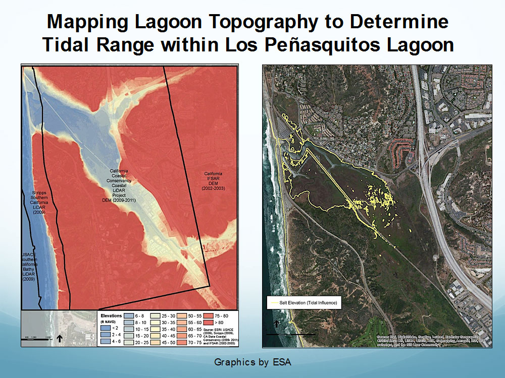Elevations and the extent of tidal influence within Los Peñasquitos Lagoon.  Graphics by ESA.